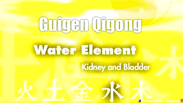Guigen-Chinese-Medical-Qigong-Water-Element-Part-4