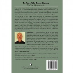 wild-goose-book-2-back