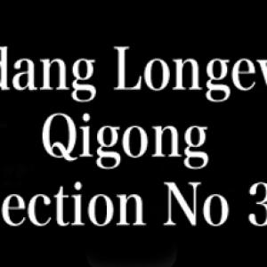 Wudang-Longevity-Qigong-Part-3-Tai-Chi-Hunyuan-Zhuang-Qigong