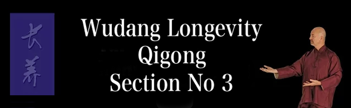 Wudang Longevity Qigong Section No 3 – Tai Chi Hunyuan Zhuang Qigong