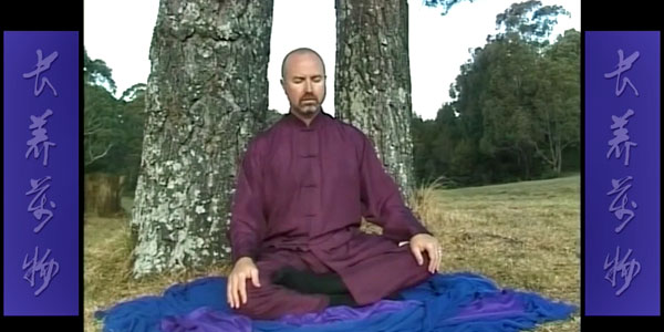 Wudang-Sitting-Ba-Duan-Jin-Section-2-Simon-Blow-Qigong
