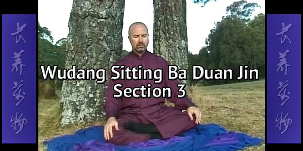 Wudang-Sitting-Ba-Duan-Jin-Section-3-Simon-Blow-Qigong