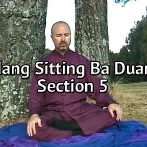Wudang-Sitting-Ba-Duan-Jin-Section-5-Simon-Blow-Qigong