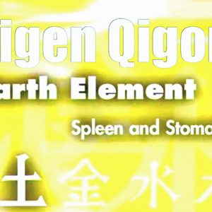 Guigen-Qigong-Part-2-Earth-Element-Simon-Blow-Qigong