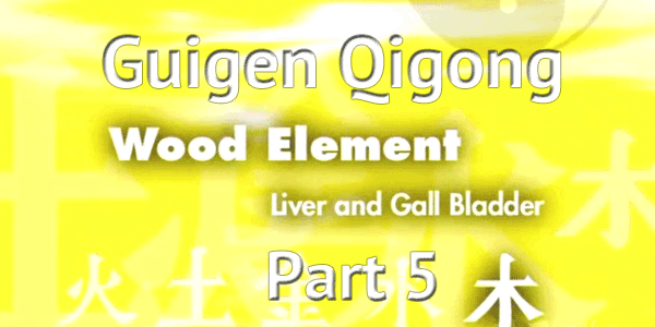 Guigen-Qigong-Part-5-Simon-Blow-Qigong