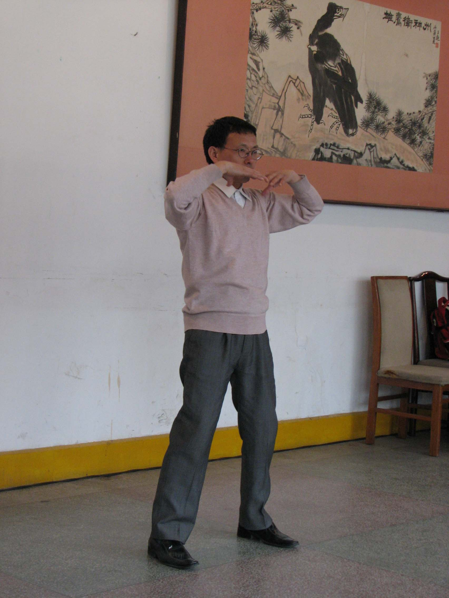 Inspiring Stories of Da Yan Wild Goose Qigong - Simon Blow