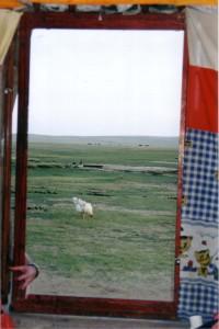 Inner-Mongolia-2002-Qigong-study-tour-2-simonblowqigong.com