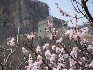 Qigong-study-tour-2-2007-simonblowqigong.com