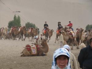 Qigong-study-tour-2008-b-simonblowqigong.com