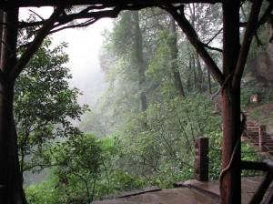 Qingchengshan-2007-2-Qigong-study-tour-simonblowqigong.com