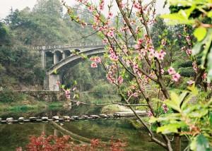 Wudangshan-Bridge-Qigong-study-2005-simonblowqigong.com